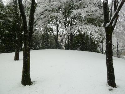 雪13.jpg