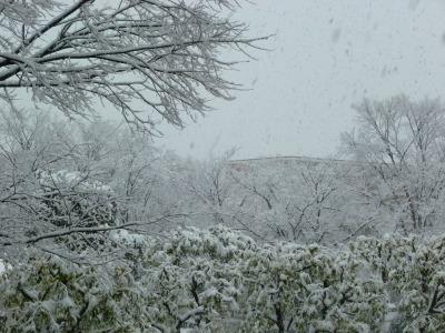 雪33.jpg