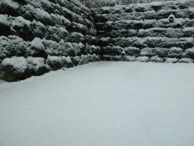 雪7.jpg