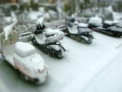 雪9-tiltshift.jpg